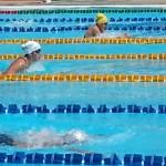 Reglas modificadas por FINA en el congreso 2013